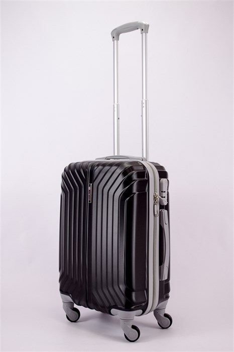 Чемодан маленький ABS Корона (Лилия) черный СФ - фото 39966